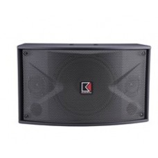 Audio King SP100